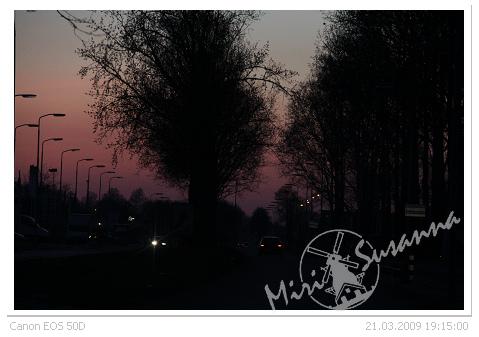 IMG_2906.jpg