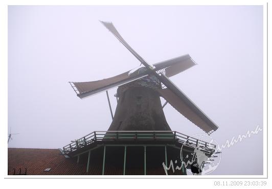20091108 50D 103.jpg
