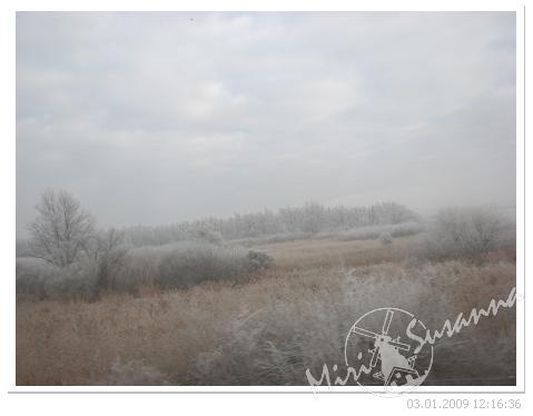 20090103 062.jpg