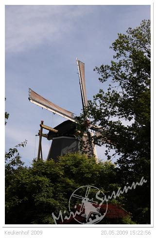 20090520 50D 212.jpg