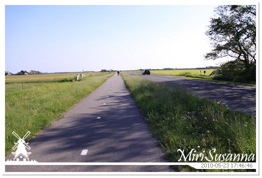 20100523 50D 415.jpg
